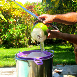 Step 7 Strain the Coconut Water